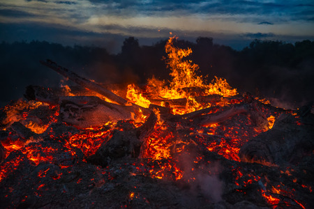 bonfire night: landscape with bonfire, night and bright hot flame Stock Photo