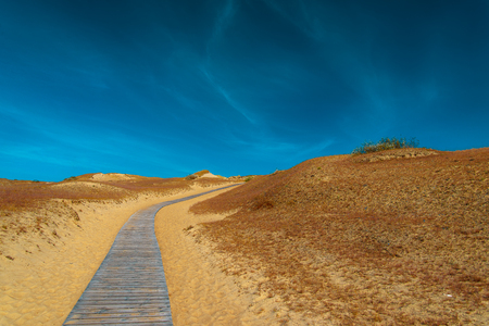 heathland: Wooden road in the sand dunes. Curonian Spit, Lithuania. Stock Photo