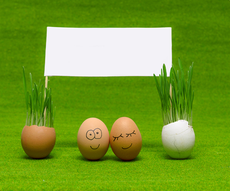 two funny eggs celebrating easter