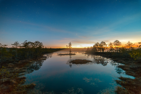 Starry night at a swamp Stock Photo