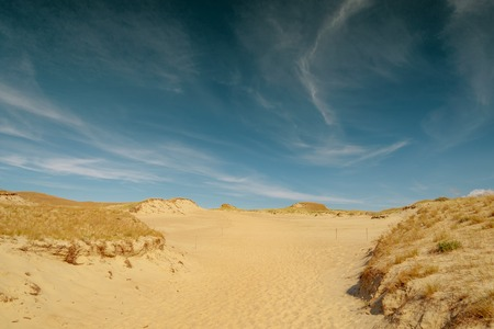 White sand dunes, Nida, Lithuania. Stock Photo