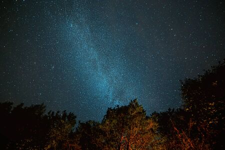 Milk Way night sky over pine trees at Soodla, Estonia 版權商用圖片
