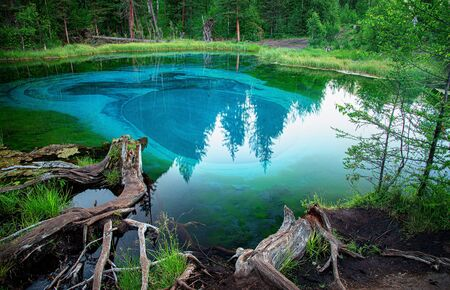 blue lake in which fountains at the bottom color blue circles in the vicinity of the village Aktash, Altai Mountains 版權商用圖片