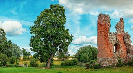 Ruins of the medieval castle of Laiuse, Estonia 版權商用圖片
