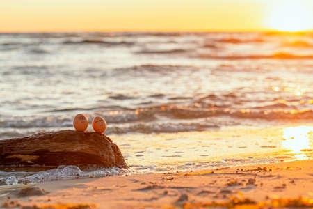 easter funny eggs relaxing on a beach. 版權商用圖片