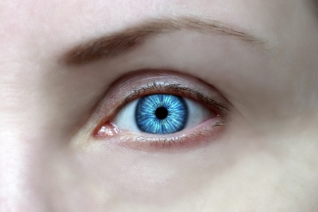 wide open eyes, bright blue iris, look ahead Stok Fotoğraf