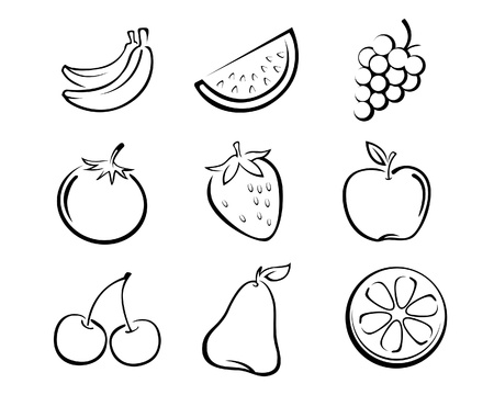 a collection of hand drawn fruit in vector illustration Illustration