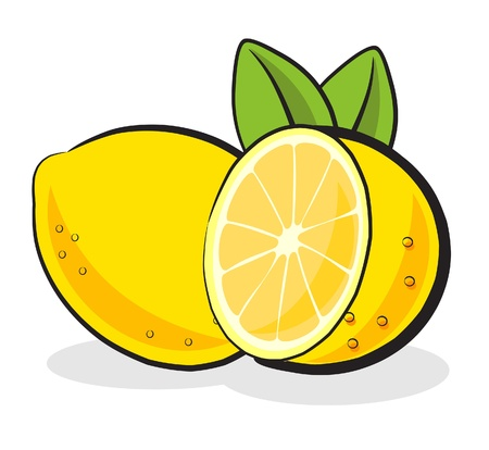 sliced lemon and a full lemon vector illustration