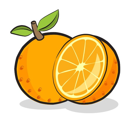 A illustration of a orange fruit