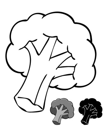 Brocolli silhouette Illustration