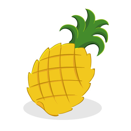 Vector illustration of a pineapple fruit Vector