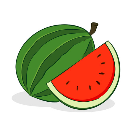 vector illustration of a watermelon