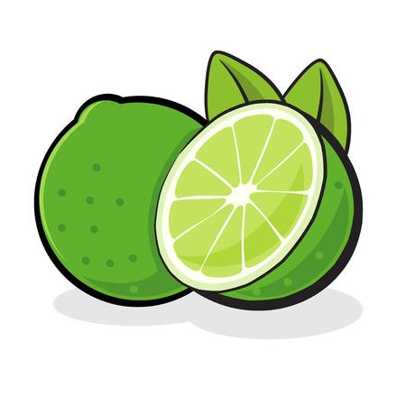 fruited: Lime Fruit Illustration