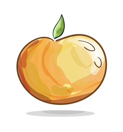 water color: Vector illustration of an orange fruit with water color effect Illustration