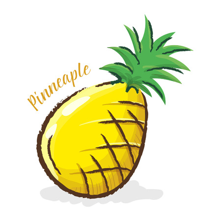 Vector illustration of a pineapple in water color style