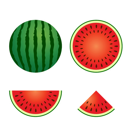 time lapse: Vector stock of delicious watermelon whole and sliced