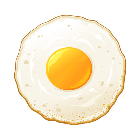 Fried egg sunny side up hand drawn vector illustration, isolated on white background