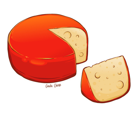 Whole round gouda cheese sliced hand drawn vector illustration, isolated on white background Ilustrace