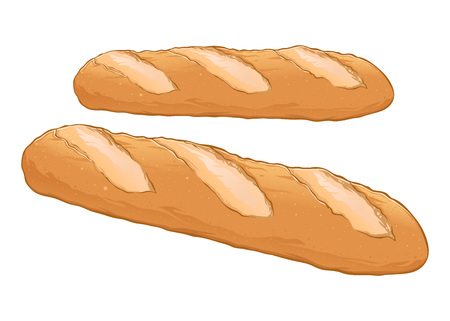 Fresh delicious baguette hand drawn, vector illustration isolated on white background