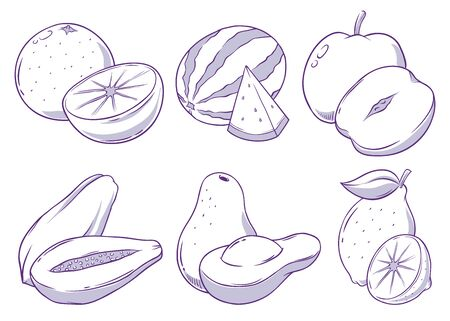 Set of tropical fruits whole and sliced, hand drawn vector doodle illustration