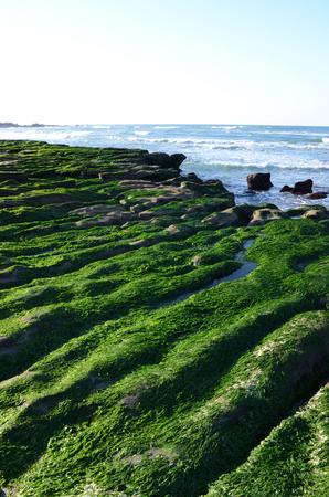 Stone Trench of Laomei Coast Stock Photo