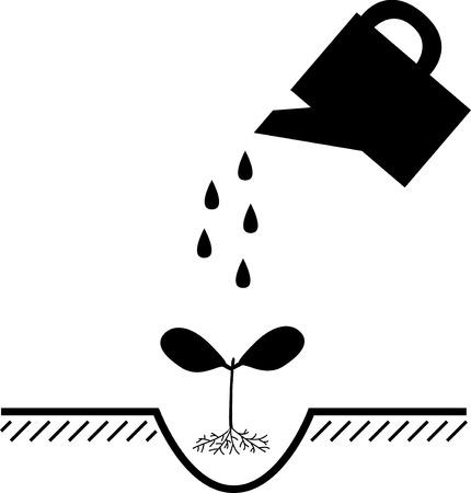 watering plants: watering plants at planting, vector