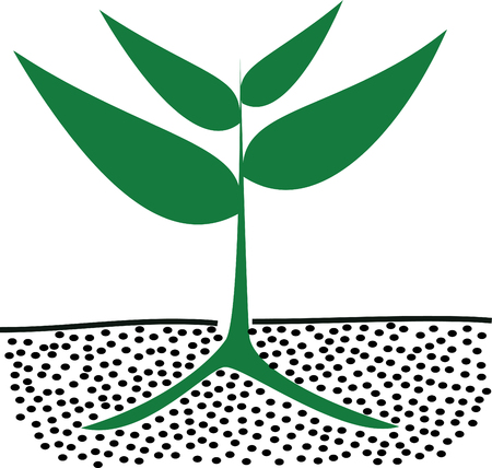 cultivated: growing green plants in soil, vector illustration