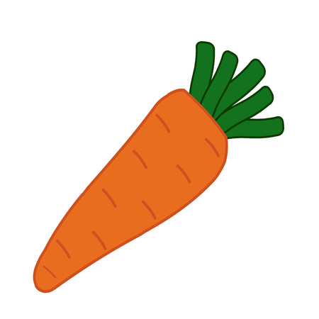 carrot isolated: one carrot isolated on a white background, vector illustration.