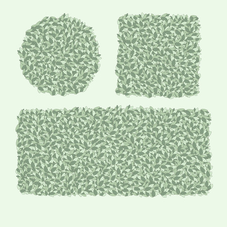 brushwood: types of trimming hedges, shrubs shaped, green hedge, an element of landscape design, pruning trees for Topiary