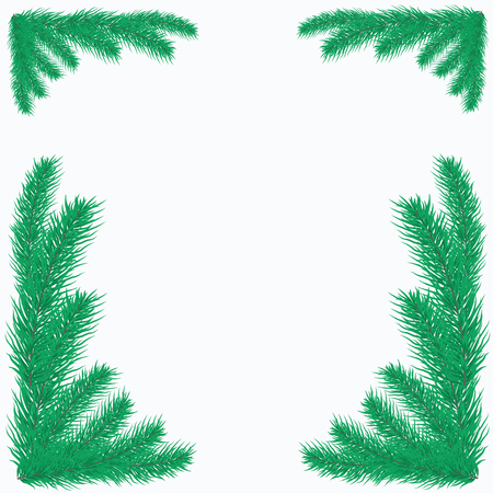 conifer: Frame of coniferous branches. Background with evergreen trees. Backdrop for a Christmas design.  Vector illustration with  branches of pine, spruce, fir or conifer.