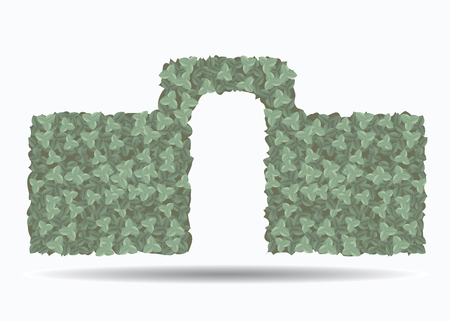 hedge: Green hedge with an arch isolated on white background .. An element of landscape design. Vector illustration.