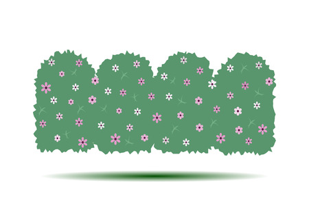 hedges: Flowering hedges. Green wall of vertical garden landscaping. Cartoon vector illustration isolated on white background. Illustration