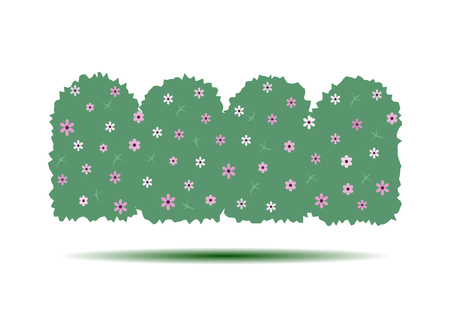 Flowering hedges. Green wall of vertical garden landscaping. Cartoon vector illustration isolated on white background. Illustration