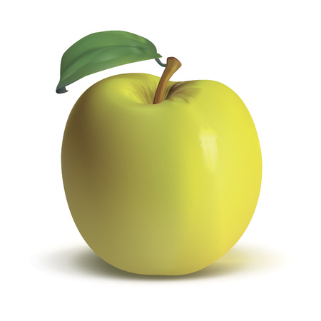 yellow apple: Ripe yellow apple