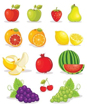 ensalada de frutas: Conjunto de la ilustraci�n frutos