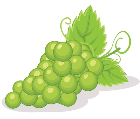 diet cartoon: Grapes illustration