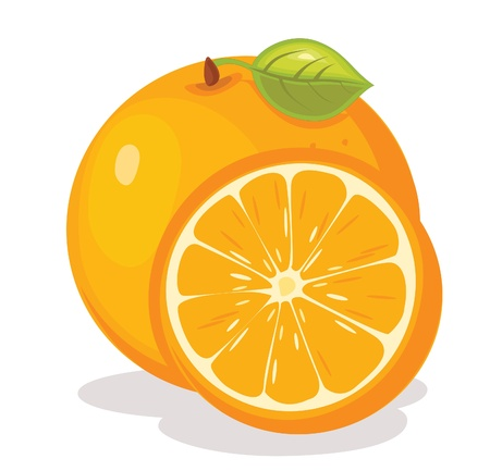 Orange illustration Illustration