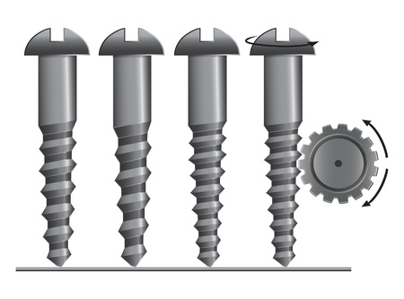 fastening: Screw with cogwheel vector illustration