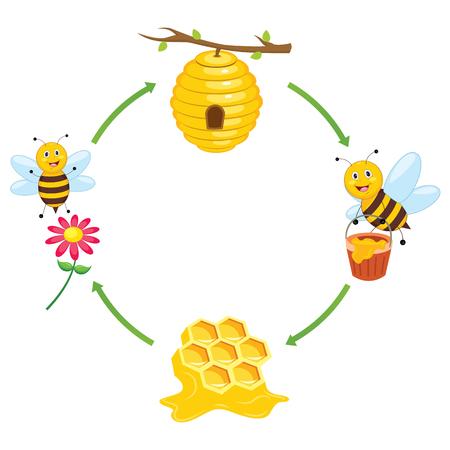 Vector Illustration of Bee Producing Honey Illustration