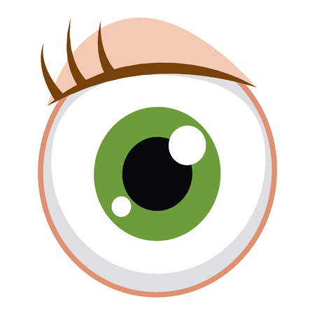 Eye Vector Illustration Illustration