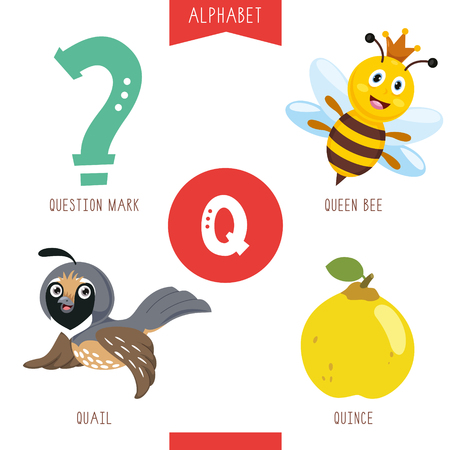 Vector Illustration Of Alphabet Letter Q And Pictures