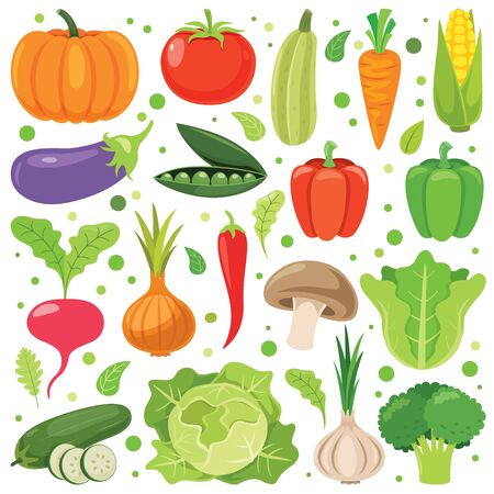 Verduras frescas para una alimentación saludable