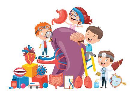 Cartoon Concept Of Human Organs