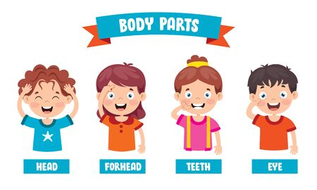 Funny Child Showing Human Body Parts Stock Illustratie