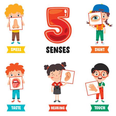 Five Senses Concept With Human Organs Vector Illustratie