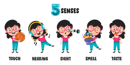 Five Senses Concept With Human Organs