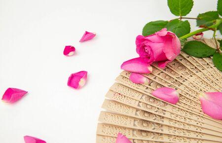 Pink rose on Spanish wooden fan, pattern, petal