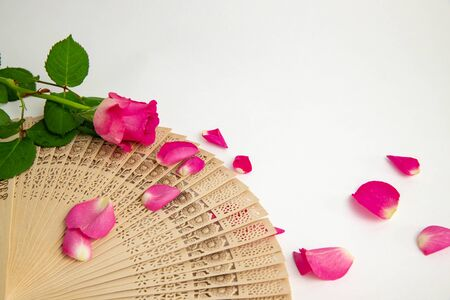pink rose on spanish wooden fan, pattern, petal
