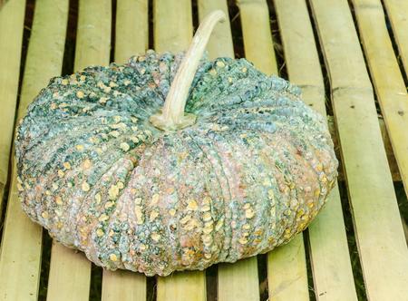 rough: Pumpkin rough Stock Photo