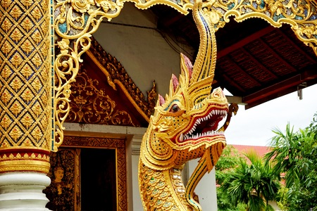 Nagas are mythical serpent beings that originated in Hinduism. In Buddhism, they often are protectors of the Buddha and of the dharma. The word naga means cobra in Sanskrit.